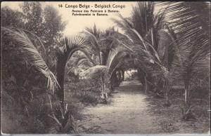 In a faraway land... (Belgian) Congo